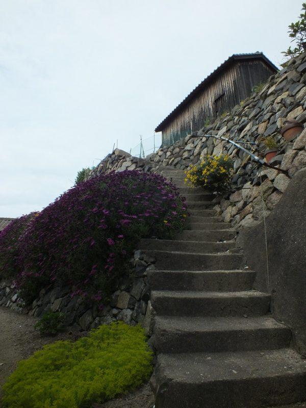 Escaliers sur Ogijima