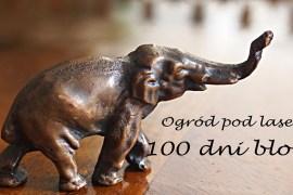 100 dni bloga