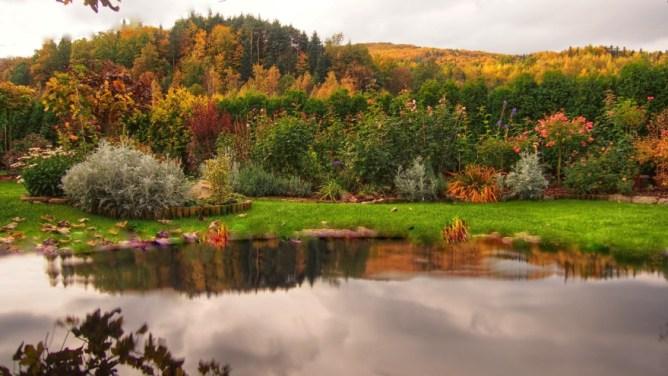 Jezioro w ogrodzie