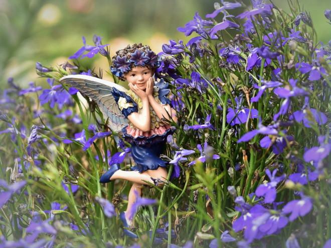 Elfy w ogrodzie