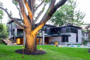 Large tree landscaping adds to home appeal