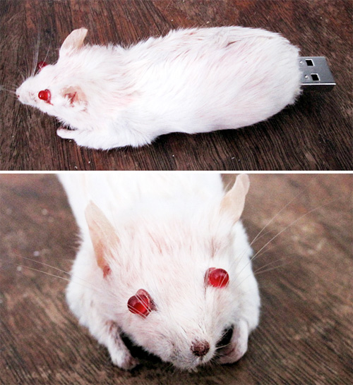 Taxidermied Mouse USB Flash Drive (Images courtesy Zackaholic)