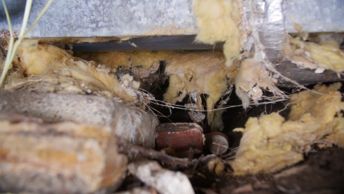 Bad insulation and debris in crawl space