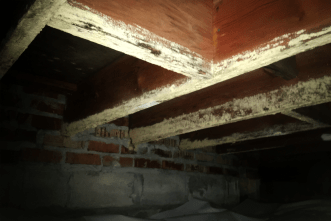 Mold on crawl space