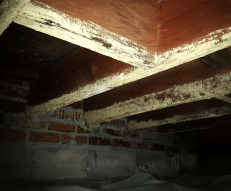 Crawl Space Moisture – What It Means When a Crawl Space is Damp