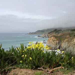Monterey, California ~ ohiogirltravels.com