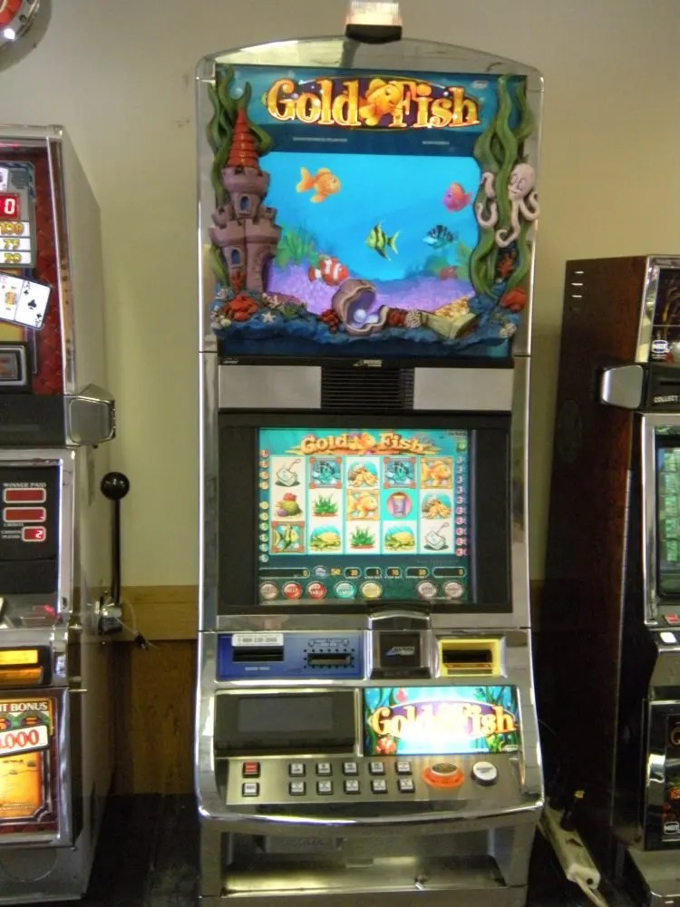 Gold Fish Slot Machine Ohio River Slots
