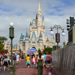 Disney Lessons from an Amateur