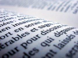 French book possessive pronouns