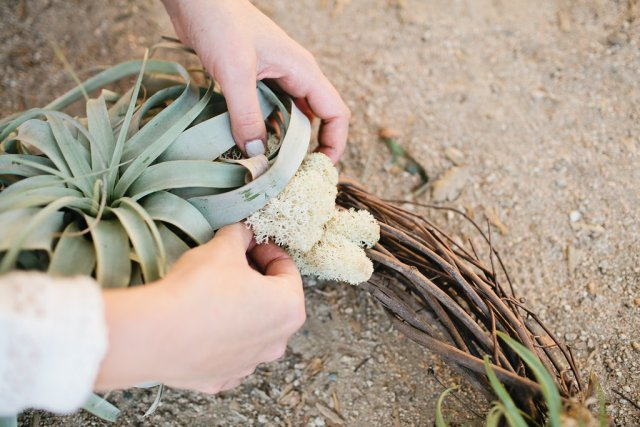 Air Plant Wreath DIY Tutorial | MV Florals + Megan Welker | Oh Lovely Day