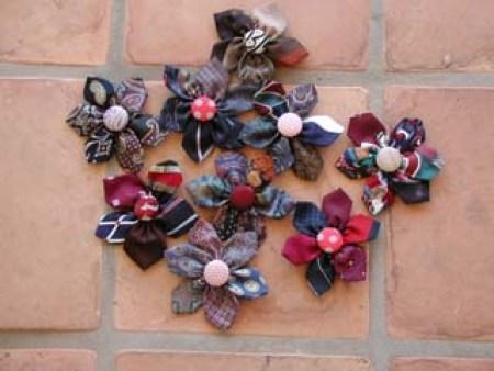 Necktie Daisies Flowers