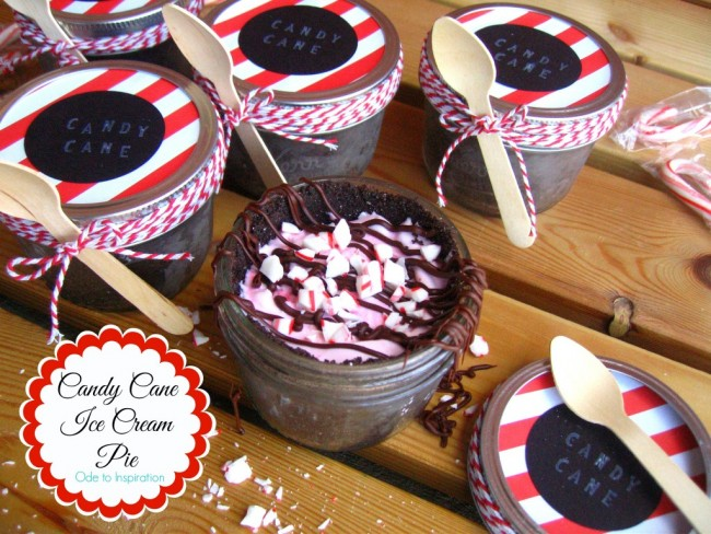 Candy-Cane-Ice-Cream-Pie-with-Trader-Joes-Joe-Joes-Crust-1024x768