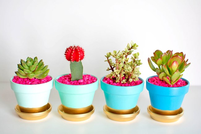 Gold-Dipped-Plant-Pots