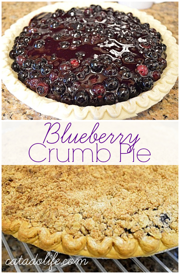 Blueberry-Crumb-Pie