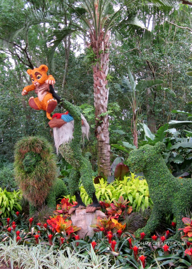 Lion King Topiarie Epcot International Flower and Garden Festival   |  OHMY-CREATIVE.COM