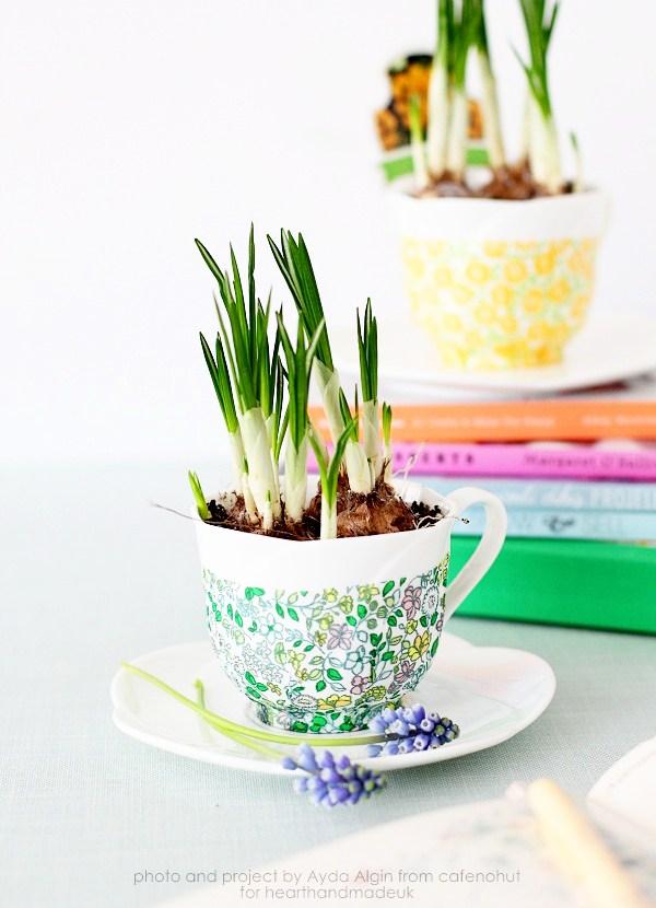 decoupage tea cup planters