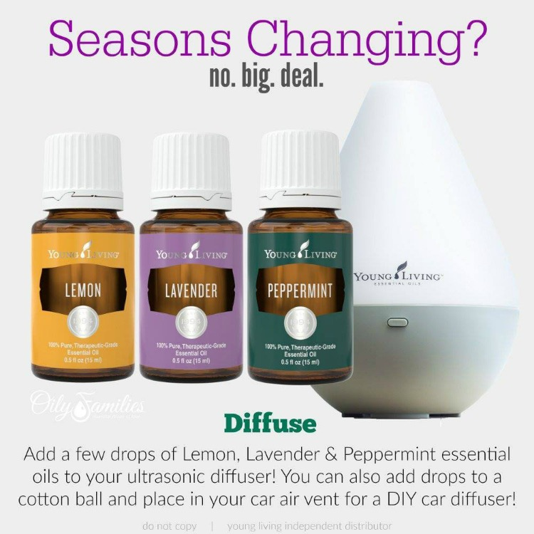 How To Use Essential Oils For Seasonal Challenges and relief! 5 best aromatherapy essential oils that will help soothe airborne irritating particles! | OHMY-CREATIVE.COM