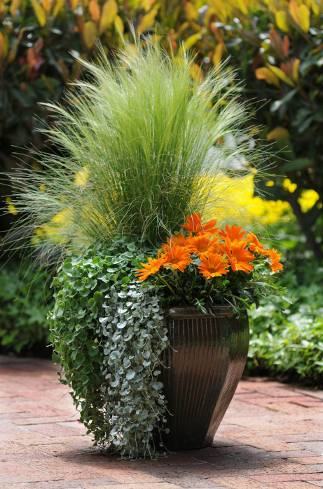 Garden Pot using flowers and grasses | OHMY-CREATIVE.COM