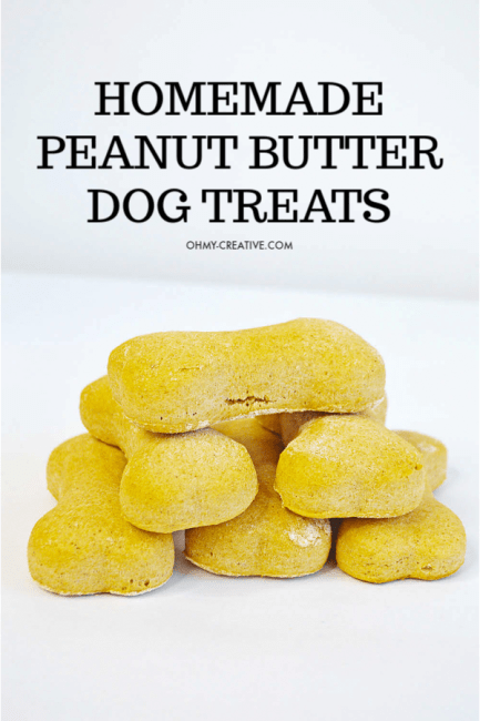 Homemade peanut butter dog treat recipe