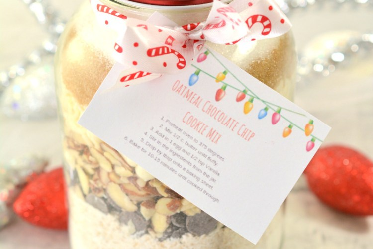 Oatmeal Chocolate Chip Cookie Mix In A Jar + Printable Tag