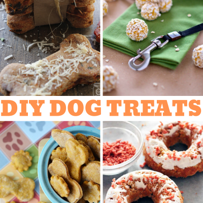 16 DIY Dog Treats That Look Good Enough To Eat