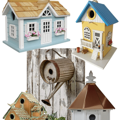 15 Beautiful Birdhouses That Your Neighbors Will Envy
