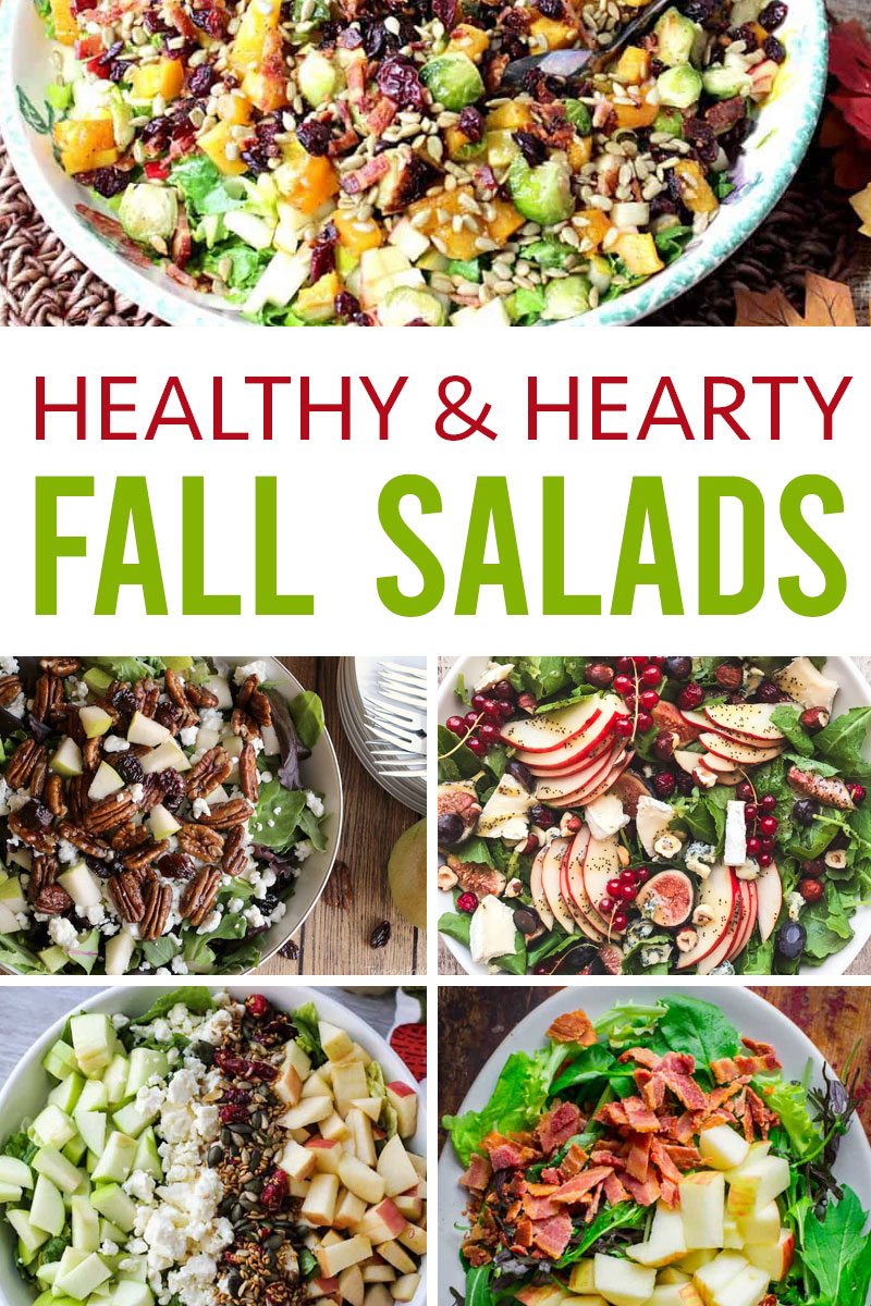 A collection of healthy and hearty fall salads