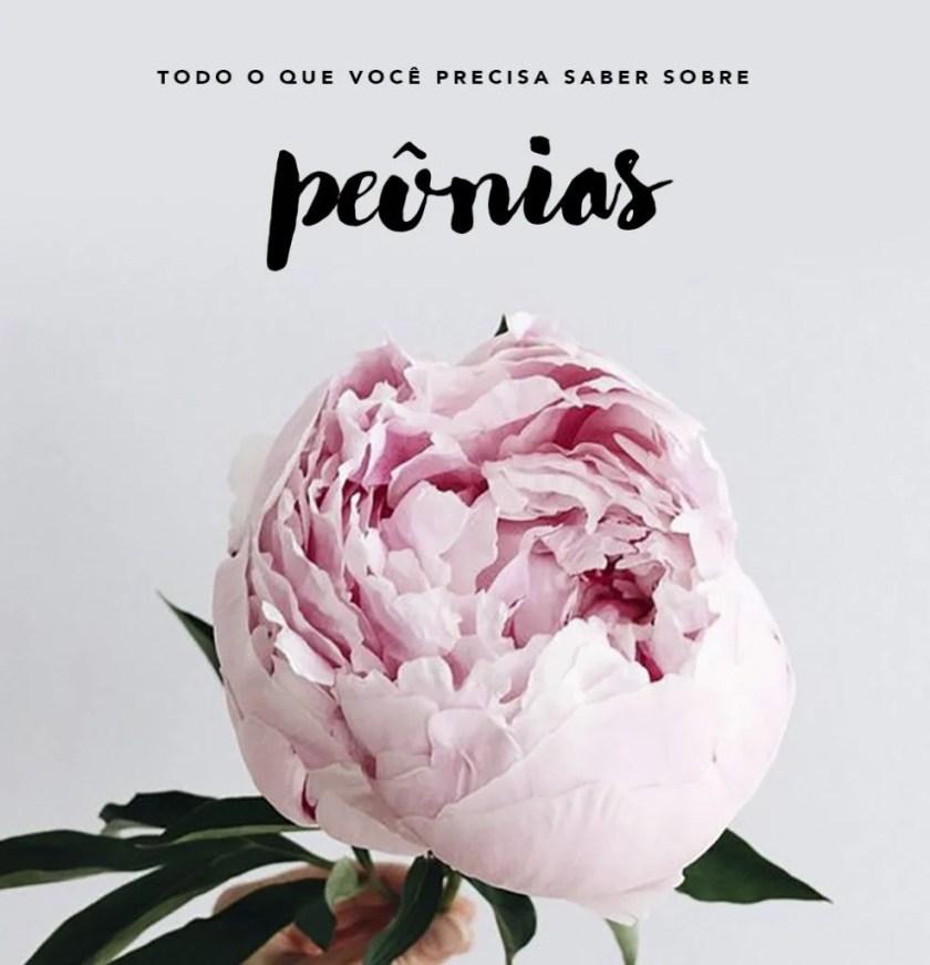 As Peônias são as flores do momento, vem saber mais! Tudo no Oh M y Closet!