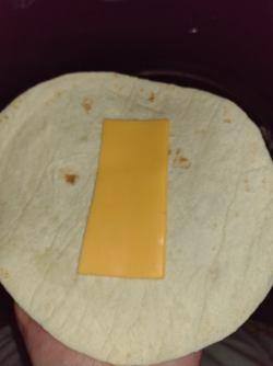 half a slice of cheese on a flour tortilla