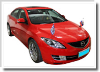 magnetic car hood flags