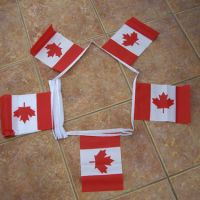 Canda Flag Bunting Printing