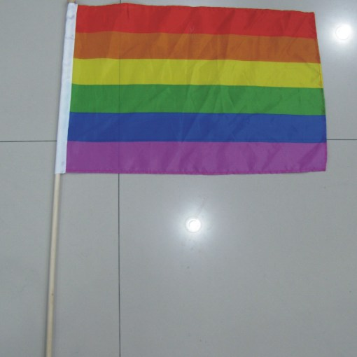 Hand Flag with Wooden Pole for Pride