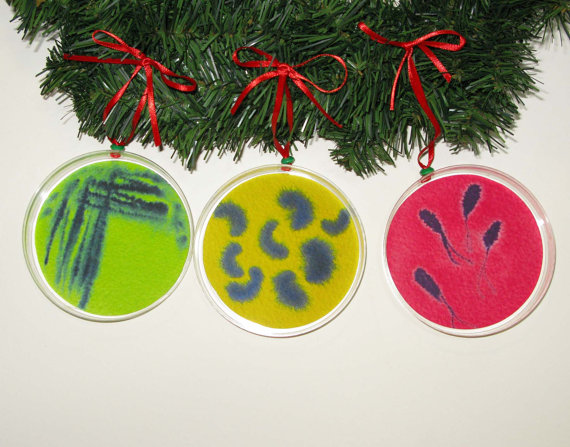 Petri Dish Christmas Ornaments - set of three