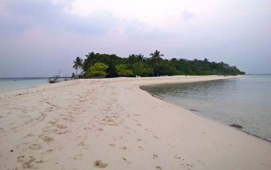 Malediven – Resorts oder bewohnte Inseln