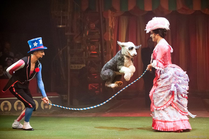Jenny Vidbel Photo Big Apple Circus