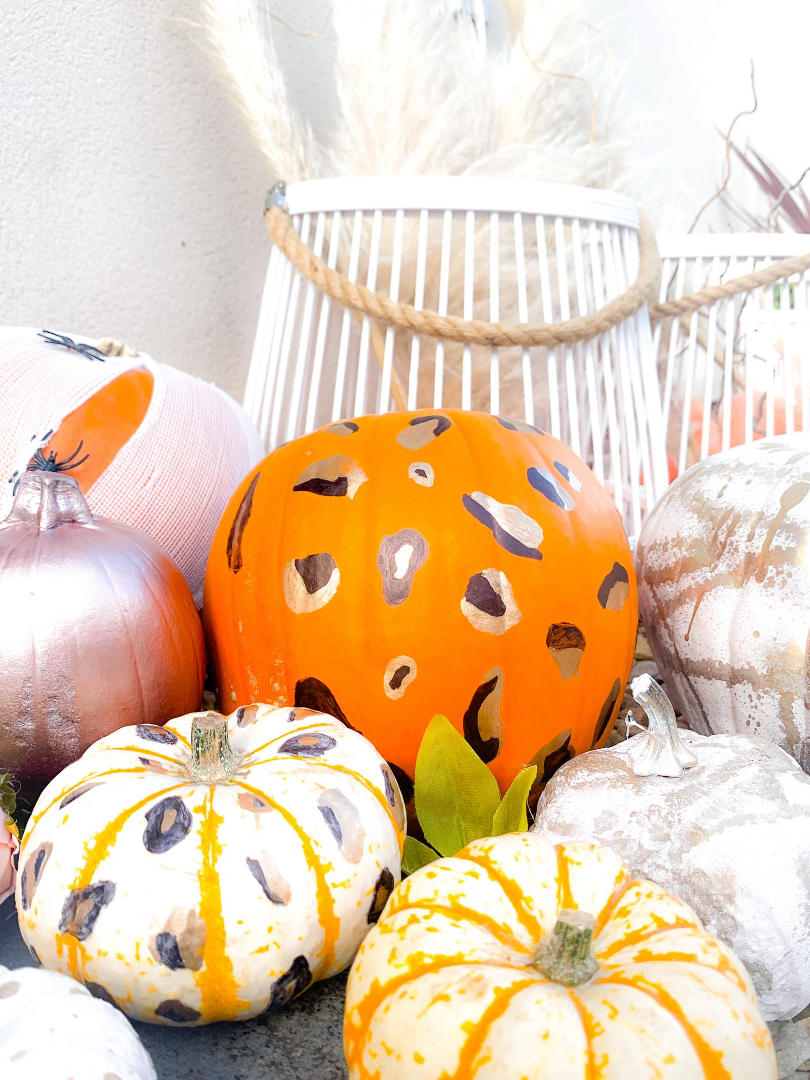 Leopard print pumpkin
