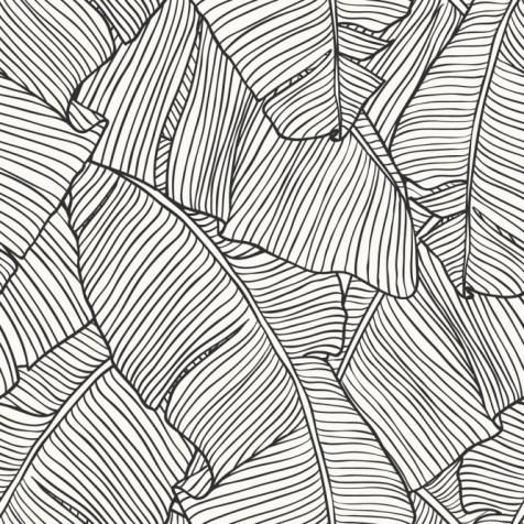 banana-leaf-wallpaper-mono-p7393-25058_medium