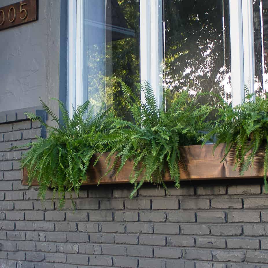 DIY  //  WINDOW BOX TUTORIAL