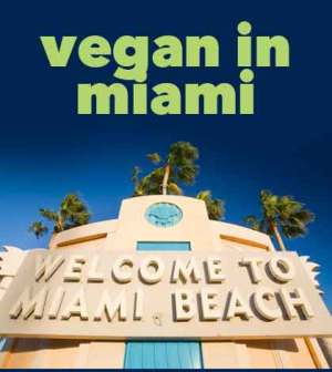 vegan in miami