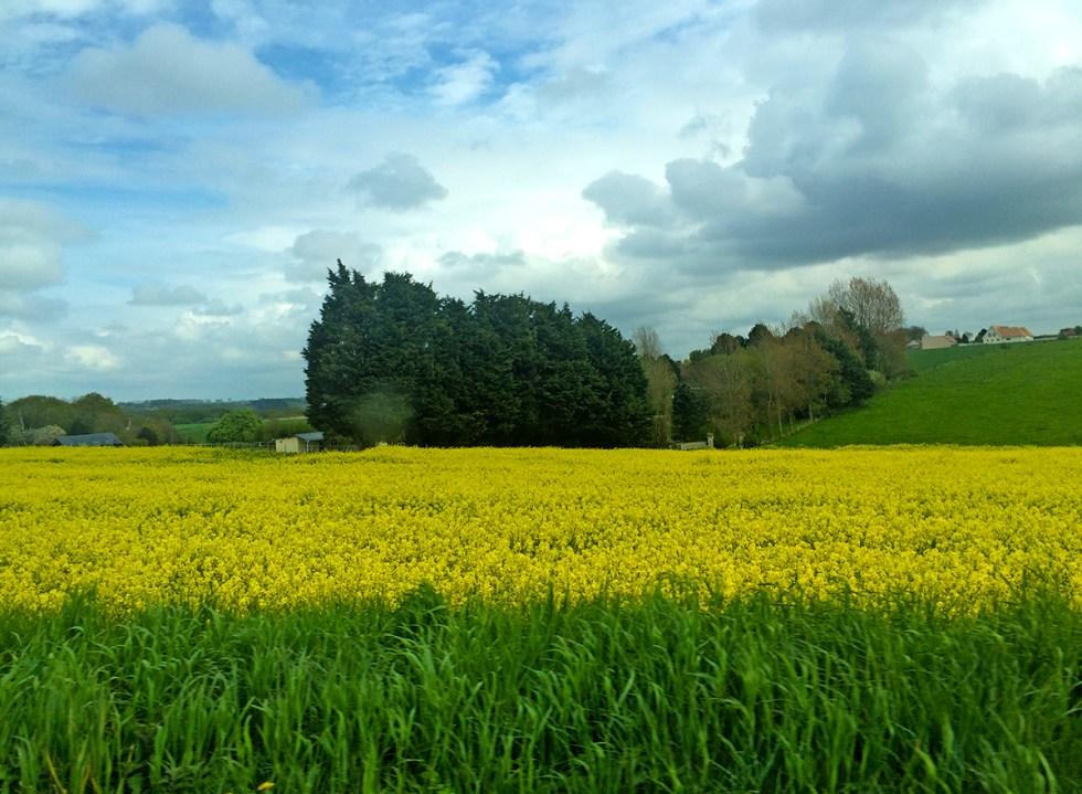 Campo na Normandia