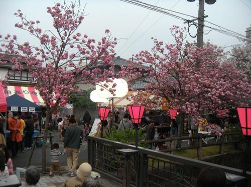桜まつり2014.4.12