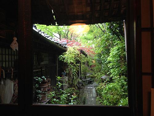 店内から眺める中庭。