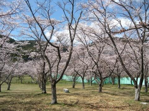 田の原公園(こたろさん)