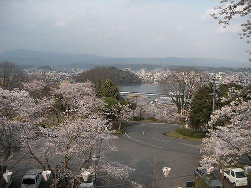 桜の時期にはこんな一面も。