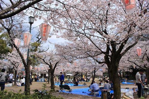 亀山公園は地元の方に人気
