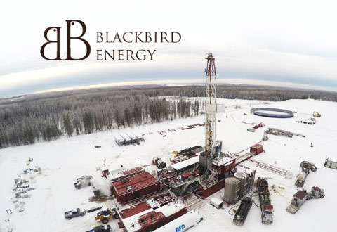 Blackbird Energy Appoints Chief Financial Officer