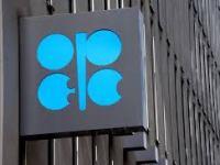 Opec ready to act as coronavirus hits oil price: Update