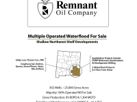 Permian Basin Chapter 11 Sale