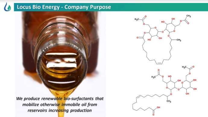 Locus Bio-Energy Solutions fig 2