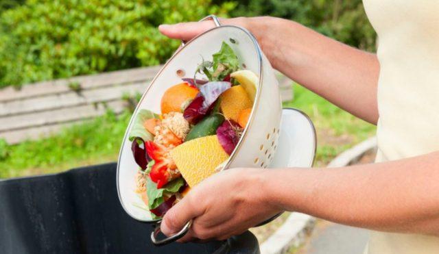 desperdicio comida